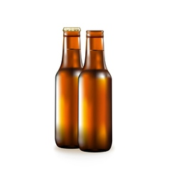 Bottle with beer popular alcoholic drink vector
