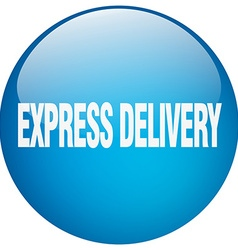 Express delivery blue round gel isolated push vector