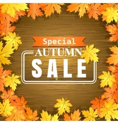 Autumn sale on wooden background vector image vector image
