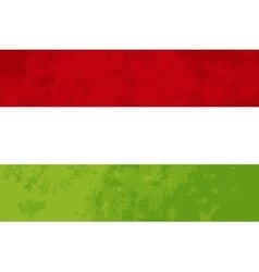True proportions hungary flag with texture vector