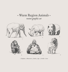 Warm region animals vintage set vector
