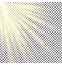Cellular field bathed in sunlight sunlight design vector