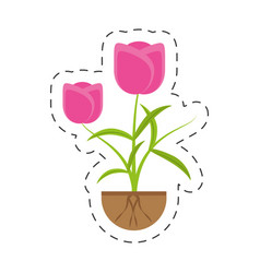 Tulip flower growing plant vector