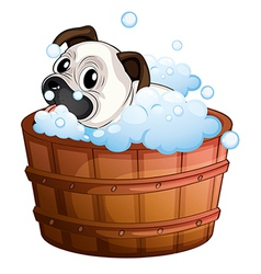 A cute bulldog inside the bathtub vector