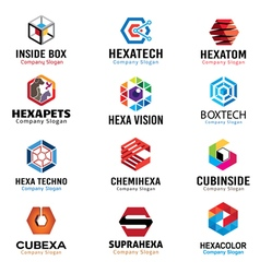 Hexagonal shapes design vector