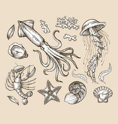Hand drawn sketch set seafood sea animals vector image