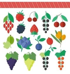 Berries elements set vector image vector image