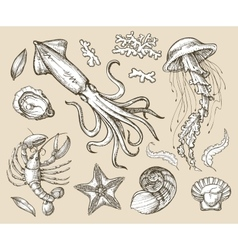 Hand drawn sketch set seafood sea animals vector
