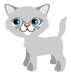Pretty gray kitten with blue eyes cartoon pet vector