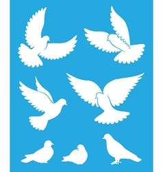 Set of pigeon silhouettes - flying and sitting vector image