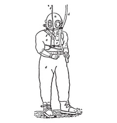 Diving dress apparatus vintage vector