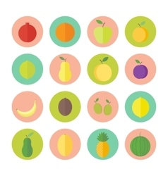 Flat circular icons for web design fruits vector image