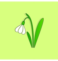 Spring snowdrop flower easter sign vector