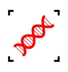 The dna sign red icon inside black focus vector