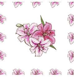 Seamless pattern with pink lilies flower on white vector