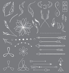 Wild-collection vector