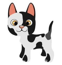 Black and white cartoon kitty pet isolated vector image