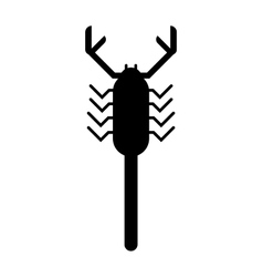 Scorpion black silhouette insect animal vector image