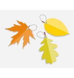 Autumn Leaves Labels vector image