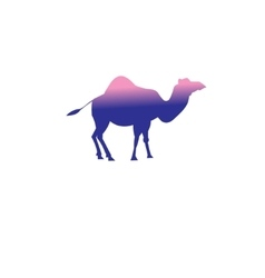 icon of a camel vector image vector image