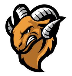 ram mascot head vector image vector image