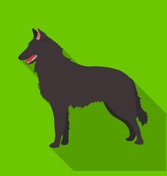 The dark belgian wolf belgium single icon in flat vector