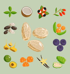 vegetarian food healthy vegetable and fruits vector image