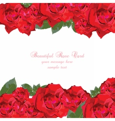 Watercolor red roses card vector