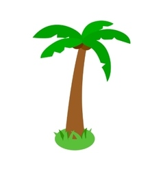 Palm tropical tree icon isometric 3d style vector image vector image