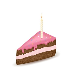 Pink birtday cake vector