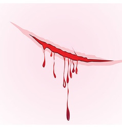 Claws scratch blood drops background vector