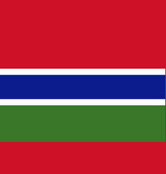 Flag of gambia in national colors vector