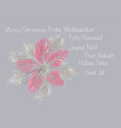 winter flower vector image