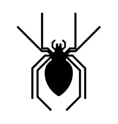Black spider insect danger silhouette icon vector image vector image