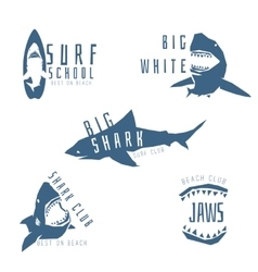 Shark logo concept for surf or beach club vector image