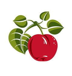 Single red simple apple with green leaves ripe vector