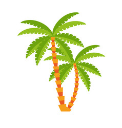 Palms icon image vector