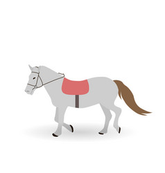 Gray horse on white background vector