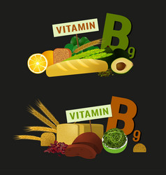 Healthy food vitamin b9 vector
