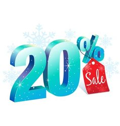 Winter Sale 20 Percent Off vector image