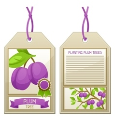 Sale tag of seedlings plum trees instructions for vector