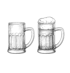 Beer mugs isolated vector image
