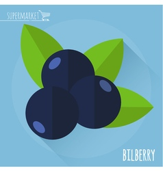 Bilberry icon vector