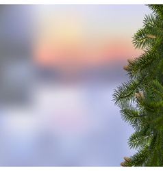 Branches of fir on winter background vector image vector image