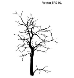 dead tree without leaves sketched vector image vector image