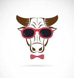 images of bull wearing sunglasses vector image