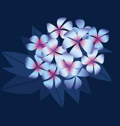 Night plumeria flowers in simple elegant style vector