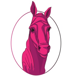 horse medallion vector image