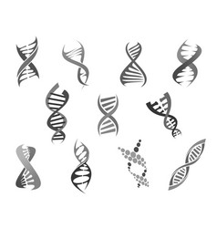 Gene dna helix isolated icons set vector