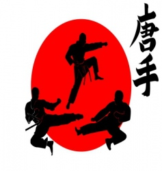 Three silhouettes karate vector